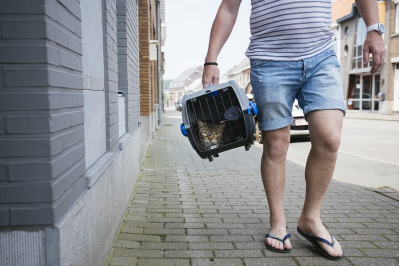 man met kat op straat