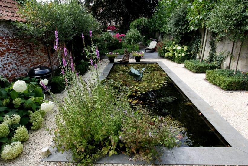Een vijver in een  tuin