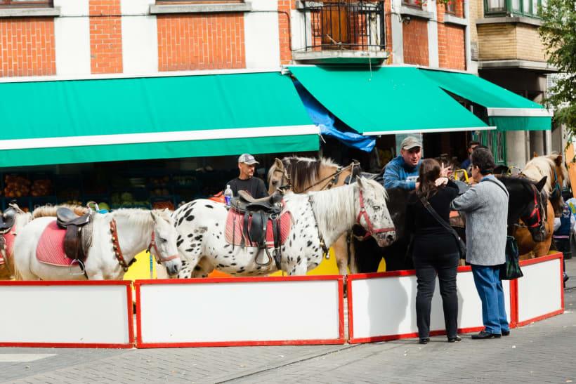Kermis met paarden en pony's