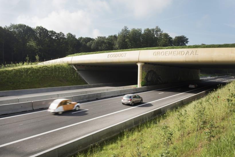 Auto's rijden onder een ecoduct