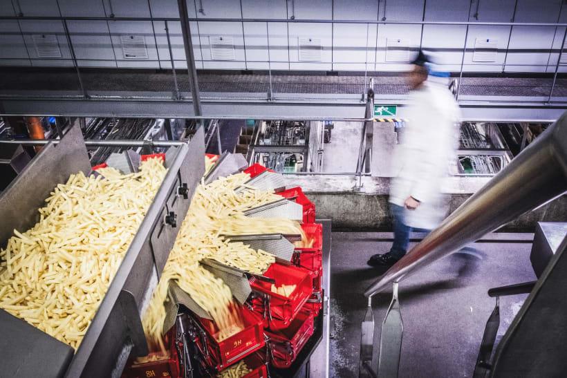Een zicht in een fabriek waar frietjes worden gemaakt